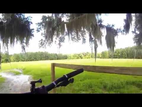 The Rock Mountain Bike Trail Gainesville, FL.