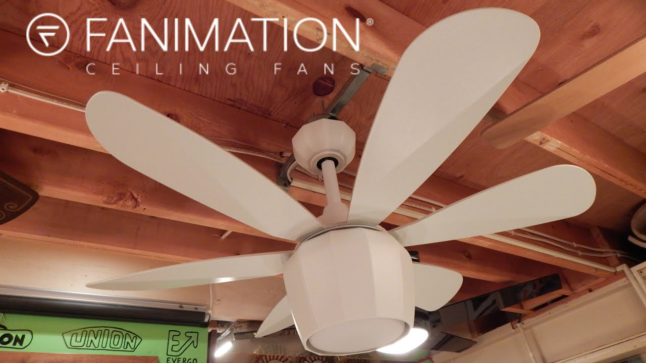 Fanimation Crease Ceiling Fan