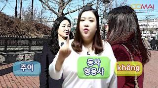 #11 베트남어 배우기 10 : 당신은 (      ) 해요?
