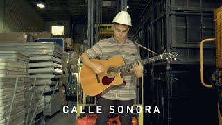 Calle Sonora | Noise Nebula - Dust