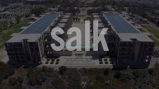 The Salk Institute: Where Cures Begin