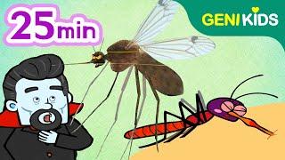 여름의 천적! 모기 이야기 특집 | 왜 모기에 물리면 가렵지?, 꼬마 흡혈귀 모기, 피가 좋아 흡혈 사총사 | 지니키즈★인기 영상모음