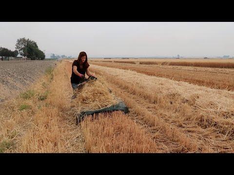 Making Wheat Wreaths