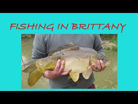 Fishing In France  - Carp Fishing In Brittany France