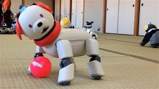 Can the Aibo Robot Dog Be Saved From Extinction?