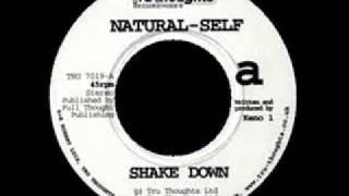 Natural Self - Shake Down
