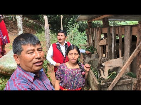 A Hopeful Visit to a Thriving Family Farm in Guatemala