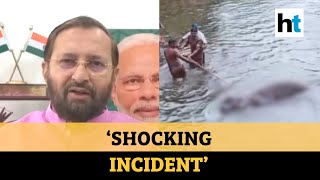 Kerala elephant killing | 'Will nab and punish the culprits': Prakash Javadekar