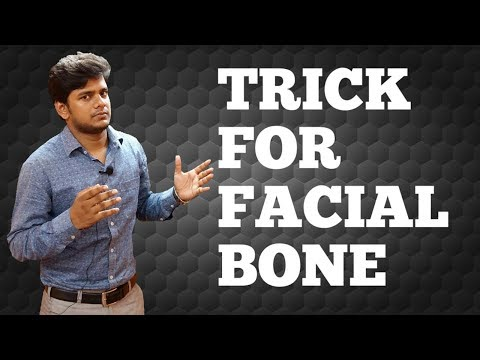 TRICK FOR FACIAL BONE