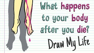 WHAT HAPPENS TO YOUR BODY AFTER YOU DIE? | Draw My Life