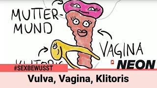 Vulva, Vagina, Klitoris: So fühlen sich die unterschiedlichen Orgasmen an