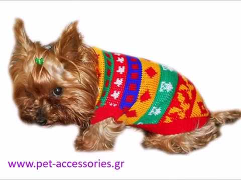 f64bf8ef86b Ρούχα για σκύλους Φθινοπωρινά και Χειμωνιάτικα - YouTube