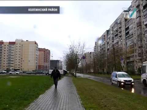 Жители поселка Тельмана хотят выйти из состава Ленобласти и прописаться в Петербурге