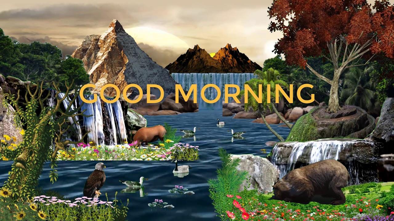 Animated Good Morning Nature Animation Video Good Morning Animation Video Youtube
