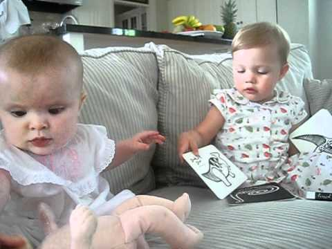 Stirling doing flashcards with Mer Bear