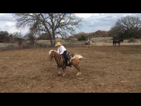 Pony Bucking Machine