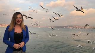 İstanbul Boğaz Restoranlar | Sardunya Restaurant