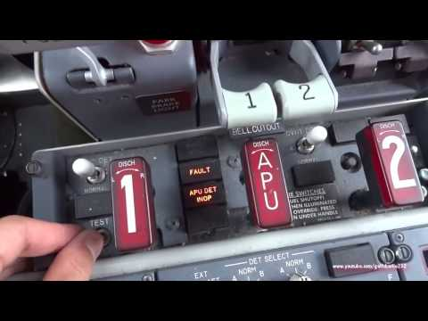 What is the start procedure from cold & dark state of a Boeing 737-800