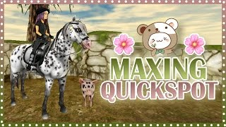 Maxing my mustang Quickspot | Star Stable
