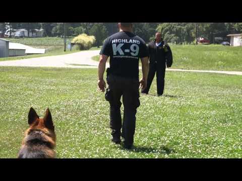 Master Dog Trainer School - Learn to Be a Dog Trainer http://internationaldogtrainerschool.com/