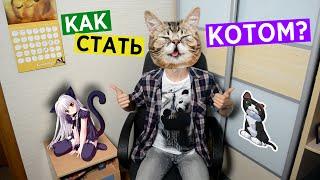 Как Стать Котом?