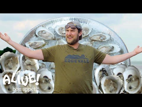 Brad Explores an Oyster Farm  It's Alive  Bon Appétit