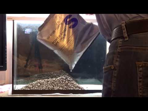 Оформление аквариума 20 литров, рыбки для аквариума