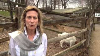 Marilyn Nuber visits Abma's Farm in Wyckoff, NJ
