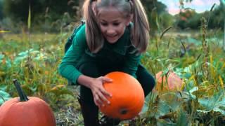 Apple Holler Pumpkin Picking