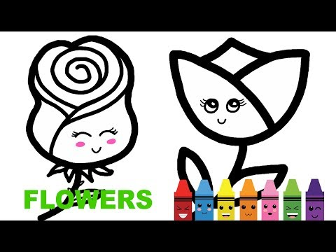 Learn Colors. Coloring Pages. Draw And Color Flowers Tulip, Rose, Sunflower For Kids
