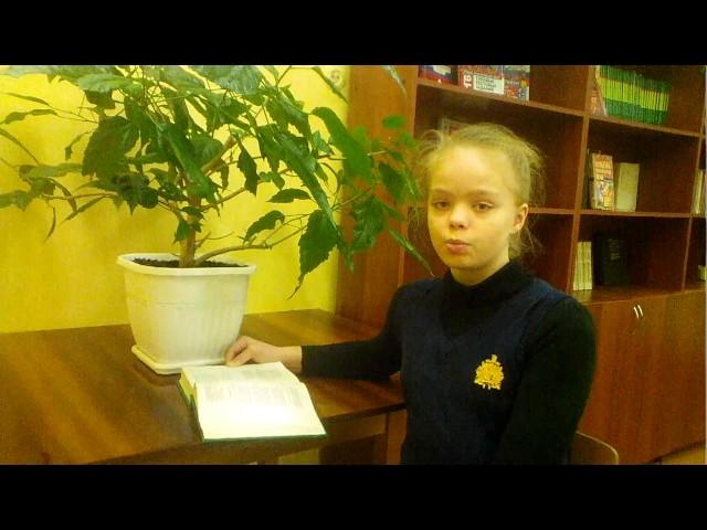 Изображение предпросмотра прочтения – ЛиндаЛоскутова читает произведение «Сонет к форме» В.Я.Брюсова