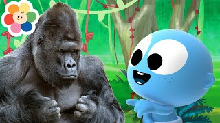 Learn Colors With Fun Animals Like Gorilla & Bear| Fun Learning Video With GooGoo Baby For Kids
