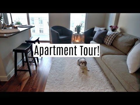 Houston Studio Apartment Tour