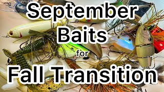 The Baits to Use in September Bass Fishing Fall Transition