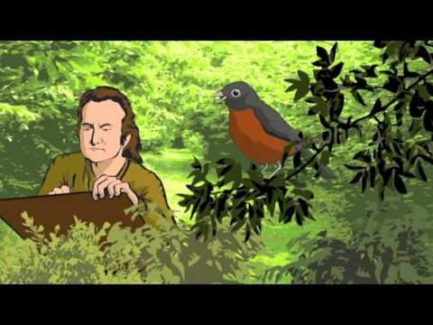 Audubon And The Birds Of America (Preview)