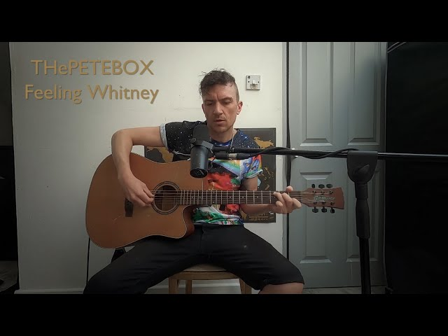 THePETEBOX - Feeling Whitney by Post Malone // Acoustic cover