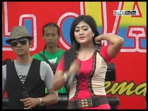 New Anil Jaya - Kau Asing Dimataku ( Philea DL )