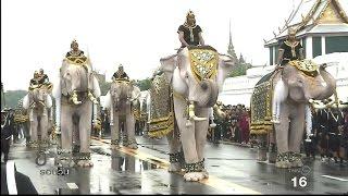 ช้าง 11 เชือกแสดงความจงรักภักดี รัชกาลที่ 9