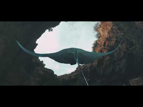 Deorro - Obvious (Official Video) [Ultra Music]
