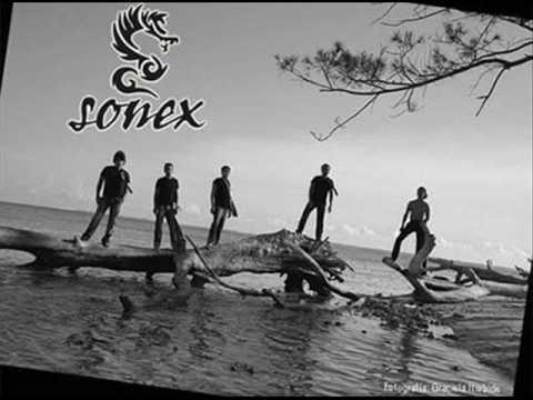Sonex - Café