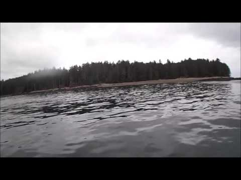 Fukushima Underwater Canada Queen Charlotte Langara Island 2015