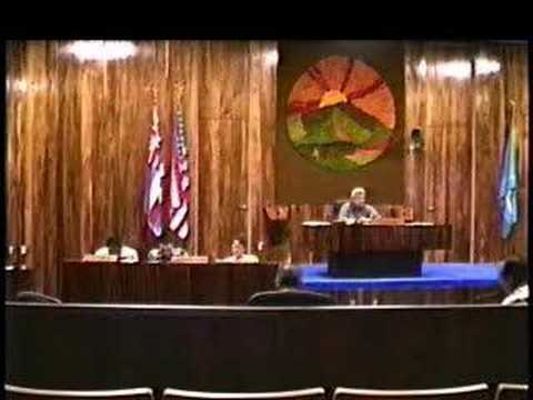 Maui Council 8-13-07
