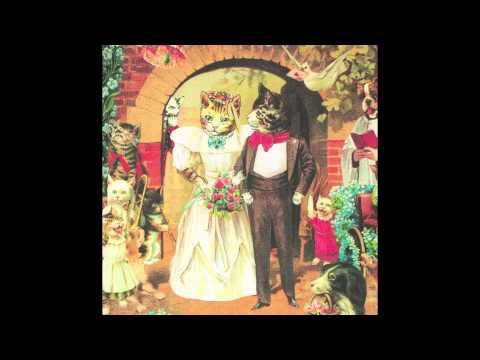 Spaceboy - Meladori Magpie (cover)