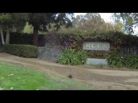 UCLA Community school interns rock the GoPros