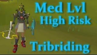 Swede - 250M+ Risk | Tribriding | Elysian | Med Level