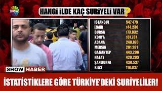 İşte istatistiklere göre Türkiye'deki Suriyeliler!