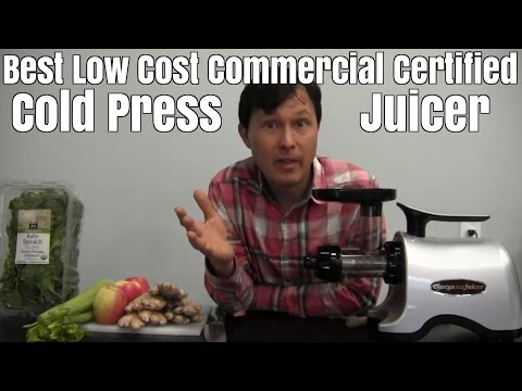 Best Low Cost Commercial Certified Cold Press Juicer for Gin