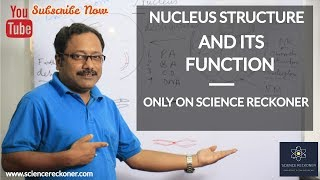 Nucleus Structure and Functions | Class 8 | CBSE | Biology | Science Reckoner