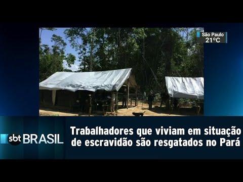 30 trabalhadores que viviam em situação de escravidão são resgatados | SBT Brasil (23/08/18)