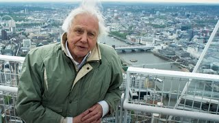 Cities That Are Saving The Planet   Planet Earth II   BBC Earth